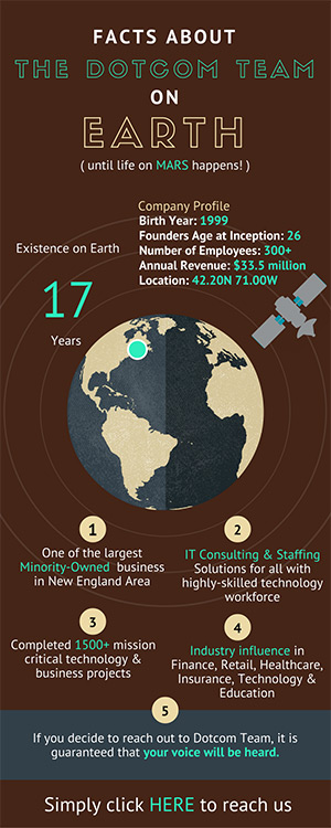 The Dotcom Team Statistics on Planet Earth